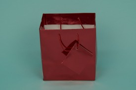 Small Metallic Shopping Bags Mix Colors #8062